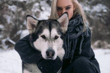 女孩与大阿拉斯加雪橇犬狗冬天背景上的肖像._高清图片_邑石网