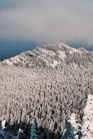 多雪的冬季森林和高山上的云彩_高清图片_邑石网