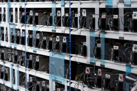 shelves with equipment for bitcoin mining farm