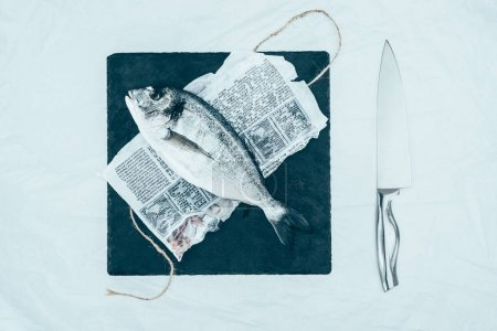 top view of uncooked dorado fish on paper with rope and slate board and knife on grey