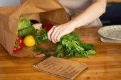 女用手把新鲜蔬菜从纸袋里拿出来, 放在厨房柜台上, 准备做美味的晚餐