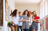 青少年学生走在高学校的礼堂里说话.