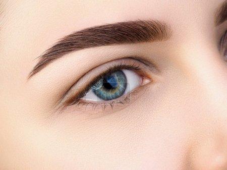 关闭了视图的美丽女性的蓝眼睛。完美的时尚眉。良好的视力、 隐形眼镜、 眉栏或时尚眉妆概念_高清图片_邑石网