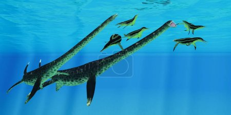 Styxosaurus attacks Dolichorhynchops