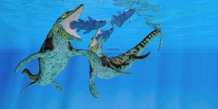 Tylosaurus Marine Reptiles