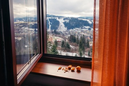 开窗远眺雪 Slavske 村