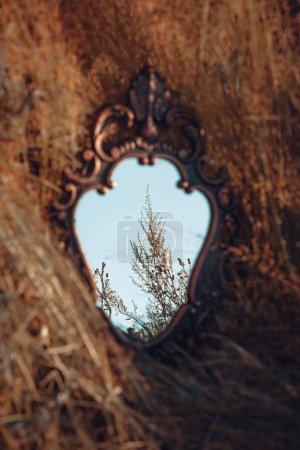 田野里那面古老的木制镜子的美丽景色_高清图片_邑石网