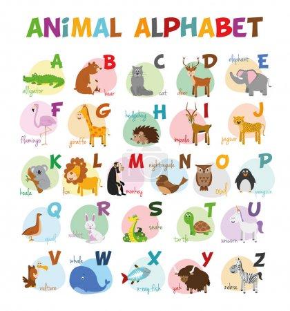 可爱的卡通动物园所示字母与有趣的动物.英语字母表.学会阅读.